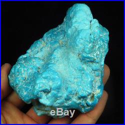 1032CT 100% Natural Sleeping Beauty Turquoise Brain Nugget Intact Speci YSTc52