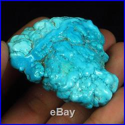 245.8CT 100% Natural Sleeping Beauty Turquoise Brain Nugget Intact Speci YSTc40
