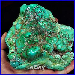 2532CT 100% Natural Sleeping Beauty Turquoise Brain Nugget Intact Speci YSTc81