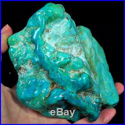 2689.5CT 100% Natural Sleeping Beauty Turquoise Brain Nugget Intact Speci YSTc76