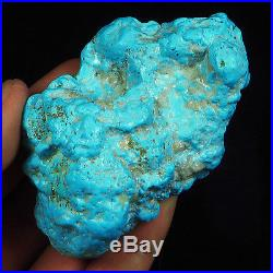 544.55CT 100% Natural Sleeping Beauty Turquoise Brain Nugget Intact Speci YSTc44