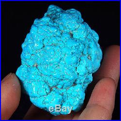 589.2CT 100% Natural Sleeping Beauty Turquoise Brain Nugget Intact Speci YSTc71