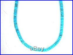 Santo Domingo James & Doris Coriz Sleeping Beauty Turquoise Necklace
